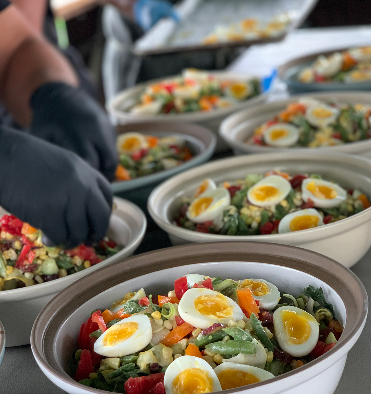 Salad for an event catered by Brazen Open Kitchen